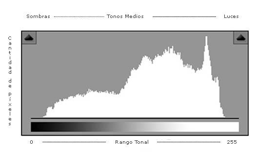 El histograma que utilizan la mayoría de programas de edición de imágenes representa 256 tonos