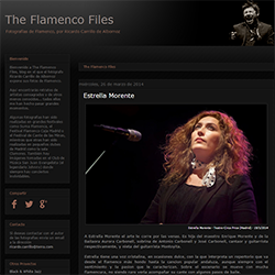 The Flamenco Files