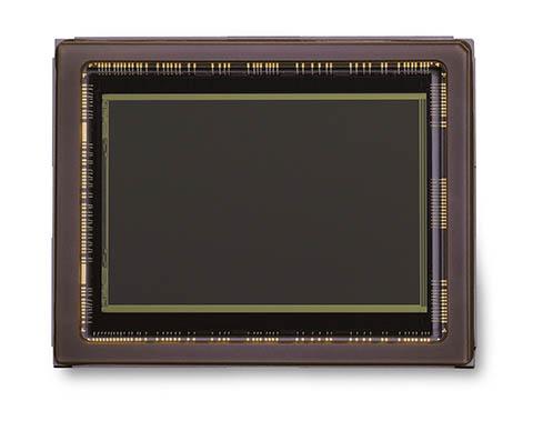 Sensor CMOS de la cámara Nikon D600