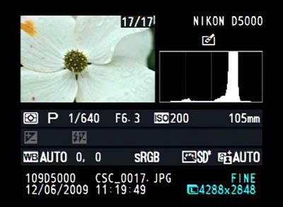 La mayoría de las cámaras digitales permiten visualizar el histograma junto con la imagen y los parámetros de la toma